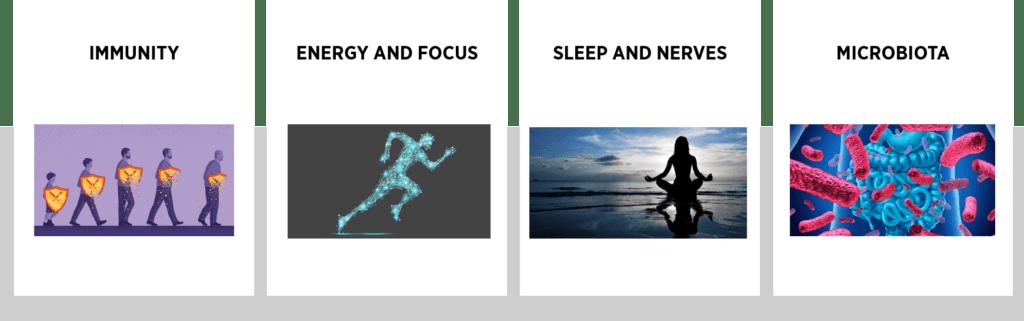 food and beverage trends: immunity, energy & focus, sleep & nerves and microbiota